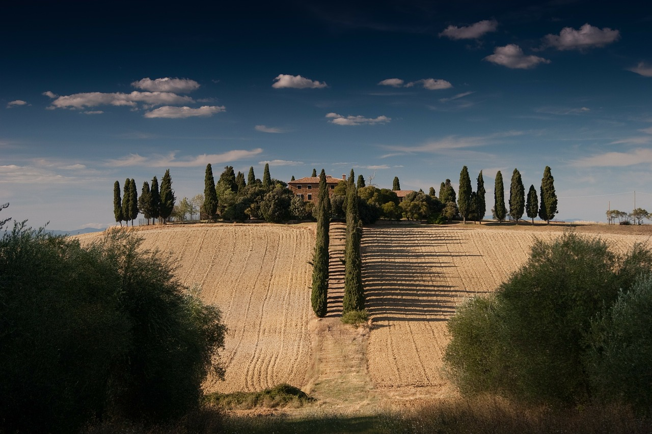 Hiszpańska farma