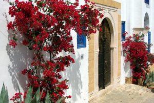Sidi Bou Tunezja
